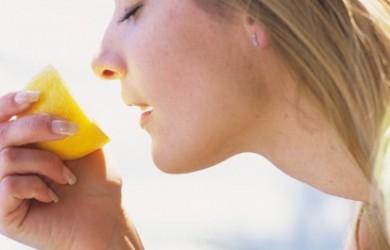 aromas-para-motivar-los-sentidos_4ub06