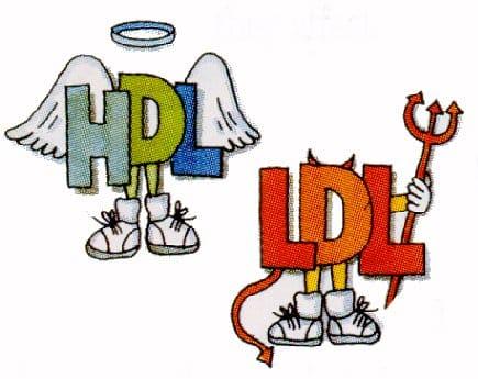 colesterol_HDL_LDH