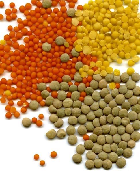 como-utilizar-la-fruta-y-la-verdura-para-hacer-psicoterapia-vegetal-parte-i_ts2l1