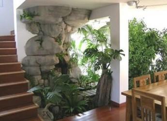 convierte-tu-casa-en-un-armonioso-jardin_0gt78