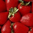 descubre-cuales-son-los-mejores-alimentos-para-nuestra-salud-parte-i_39rc1
