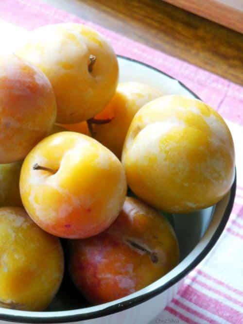 dulces-exquisitos-aprovechando-la-ultima-fruta-del-verano_e96vd