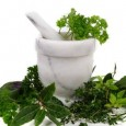 las-hierbas-que-limpian-el-cuerpo-de-toxinas_5nvrj