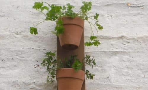 manualidad-para-tener-las-hierbas-y-especias-a-mano-en-la-cocina_odn70