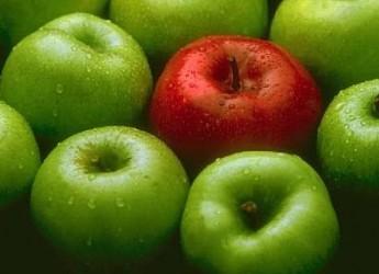 manzana-lo-mejor-para-tu-salud_auyd2