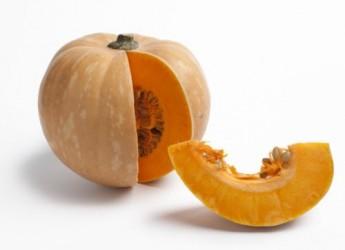preguntas-sobre-los-carotenos-esos-colores-que-nos-protegen_u7czb