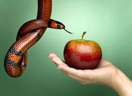relaciones-prohibidas-entre-lazos-de-sangre-incesto_3dxkq