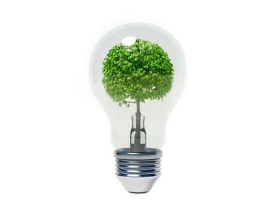 secretos-para-tener-una-casa-ecologica_ao1us