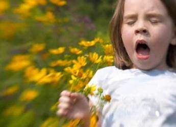 siete-alimentos-e-hierbas-para-calmar-las-alergias_05ko7