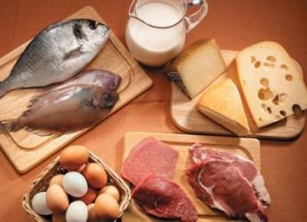 top-10-alimentos-mas-altos-en-proteina_ojvl0