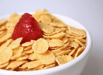 un-buen-desayuno-para-sentirte-bien-sin-que-te-pese_cbil8