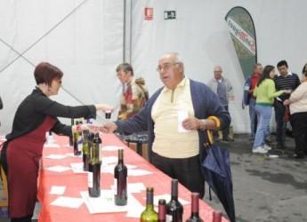 un-fin-de-semana-para-participar-en-las-fiestas-del-vino-de-bullas_xpadm