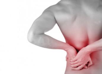 una-buena-dieta-elimina-el-dolor-de-espalda-conocela_n0qky